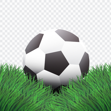 Realistic Style,Classic Football or Soccer on Green Grass design,isolated background,vector,illustration.