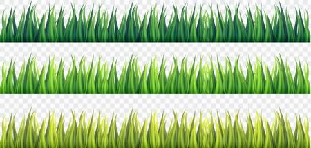 Frontières d'herbe verte fraîche sur fond isolé blanc, vecteur, illustration. Banque d'images - 98723444
