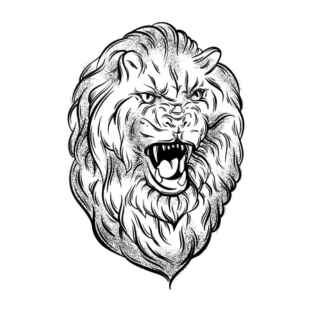 Vector illustration of realistic lion made in hand sketched style. Hand drawn artwork with portrait of growling animal . Template for card, poster, banner, print for t-shirt