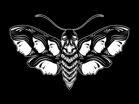 Vector hand drawn illustration of moth with female faces on the wings. Fantasy, occultism, tattoo art. Template for card, poster banner print for t-shirt.