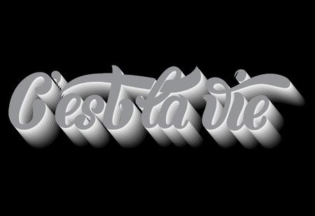 C'est la vie. Citer le fond typographique. Lettrage manuscrit unique. Modèle de carte, affiche, impression pour t-shirt, bannière Banque d'images - 87290593