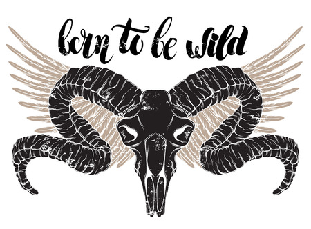 Quote typographical background. Born to be wild. Unique hand written lettering. Hand drawn realistic illustration of ram skull. Template for card poster banner print for t-shirt.