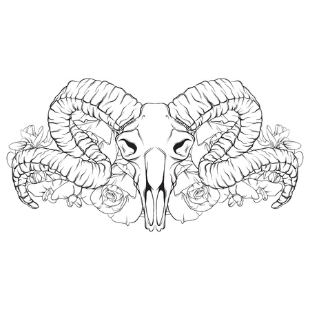 Vector hand drawn illustration. Artwork with skull of ram, flowers.  Alchemy, religion, spirituality, occultism, tattoo art. Template for postcard, banner, poster, print for t-shirt.