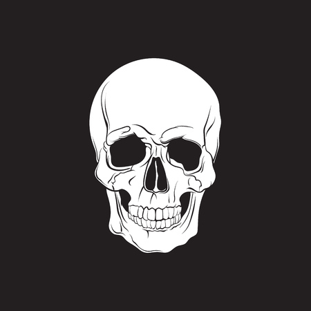 Vector illustration of human skull isolated in hand drawn realistic style. Template for business card poster flyer and banner.