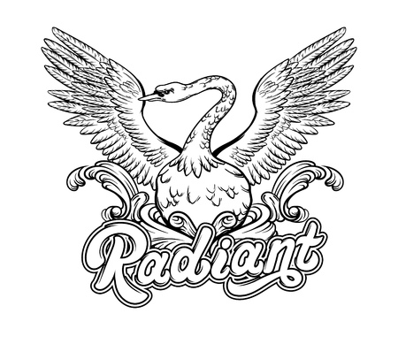 Radiant. Vector hand drawn illustration of swan. Handwritten lettering. Template for card, poster. banner, print for t-shirt, pin, badge, patch.