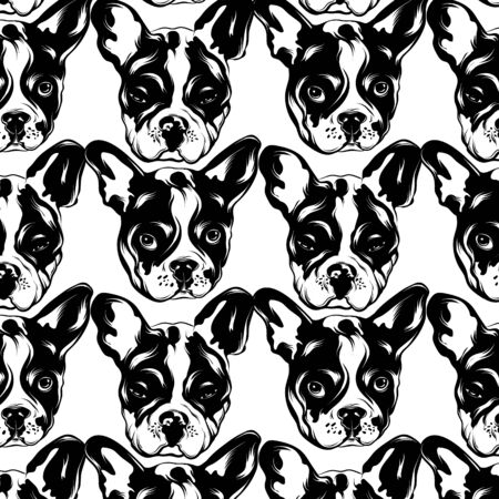 Vector pattern with hand drawn illustration of bulldog . Template for card, poster. banner, print for t-shirt, pin, badge, patch. 일러스트