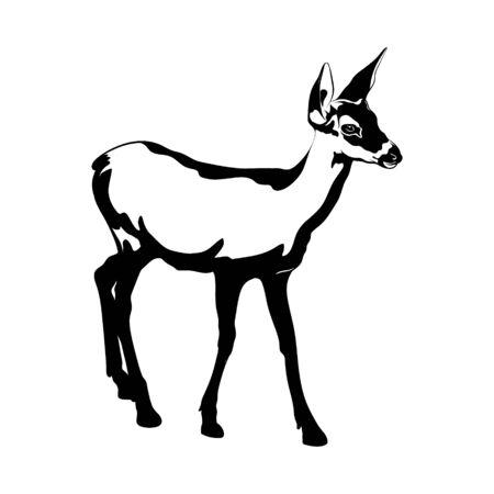 Illustration vectorielle dessinés à la main de faon isolé. Oeuvre de tatouage créatif. Modèle de carte, affiche, bannière, impression pour t-shirt, épingle, badge, patch. Vecteurs