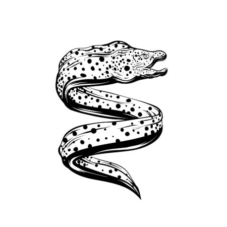 Vector hand drawn iluustration of moray eel isolated. Tattoo artwork. Template for card, poster, banner, print for t-shirt, pin, badge, patch.