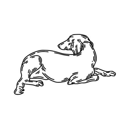 hand drawn illustration of lying persian greyhound dog isolated. Tattoo artwork. Template for card, poster, banner, print for t-shirt, pin, badge, patch. Stok Fotoğraf - 153420865