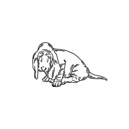 hand drawn illustration of basset dog isolated. Tattoo artwork. Template for card, poster, banner, print for t-shirt, pin, badge, patch.