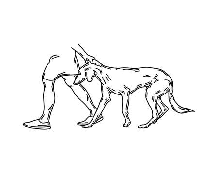 hand drawn illustration of human dragging Persian greyhound dog isolated. Tattoo artwork. Template for card, poster, banner, print for t-shirt, pin, badge, patch. Stok Fotoğraf - 153420870
