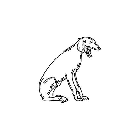 hand drawn illustration of yawning Persian greyhound dog isolated. Tattoo artwork. Template for card, poster, banner, print for t-shirt, pin, badge, patch. 矢量图像