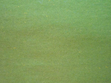 Green grassy plain colored paper surface as background. High quality photo
