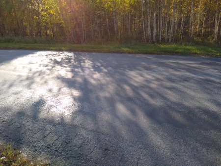 an asphalt road in an autumn forest with a blue sky. High quality photo Standard-Bild
