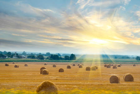 Outside the window of a moving train can be seen field with straw bales lit bright sunlight Stock Photo - 15173706