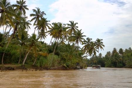 backwaters: Kerala backwaters  Kerala, India Stock Photo