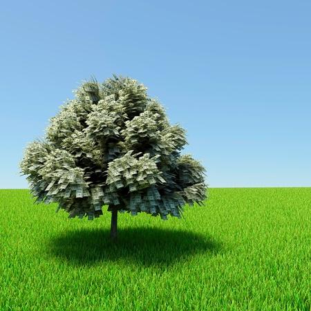 Geld Baum wächst in der Mitte der grünen Wiese