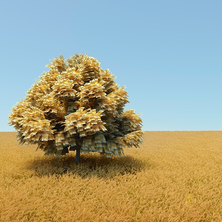 Automne money tree in the middle of wheat field photo