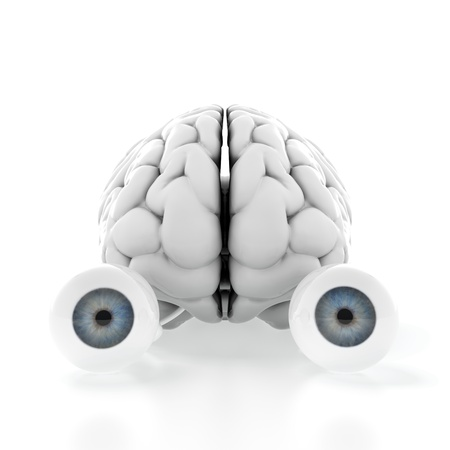 3d render of brain with eyes on white background photo
