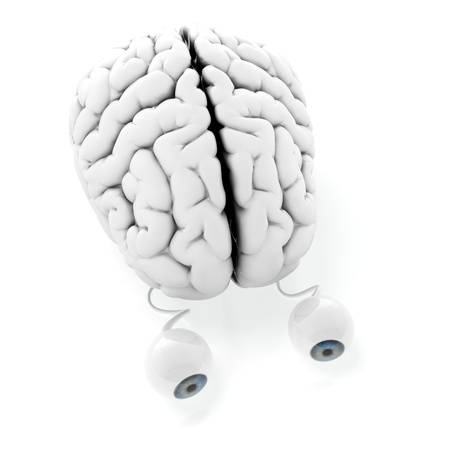 3d render of brain with eyes on white background Stock Photo - 14095394