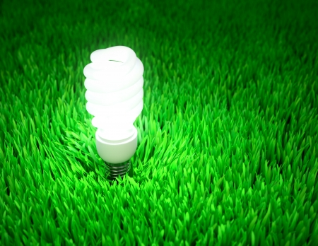 Glowing energy saving light bulb on a green field, energy conservation concept  photo