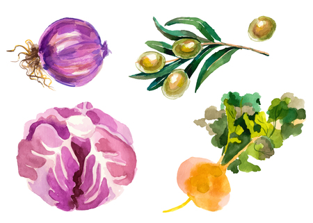 Watercolor vegetables isolated on white