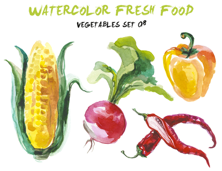 food: Watercolor vegetables isolated on white