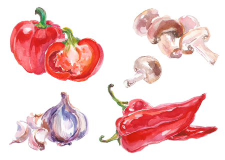 Watercolor painted collection of vegetables. Hand drawn fresh food design elements isolated on white background.