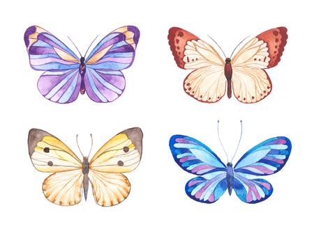 vintage background: Watercolor butterflies illustration