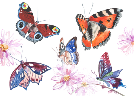 texture: Watercolor butterflies illustration