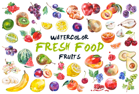Watercolor fruits isolated on white Vettoriali