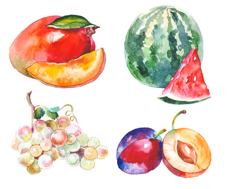 Watercolor fruits isolated on white Stock Photo