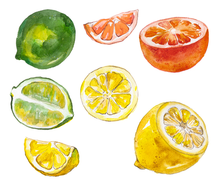 Watercolor fruits isolated on white Stock Photo - 90142346