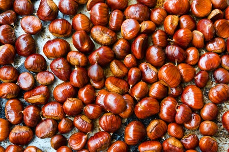 Many ripe chestnuts for texture or background.