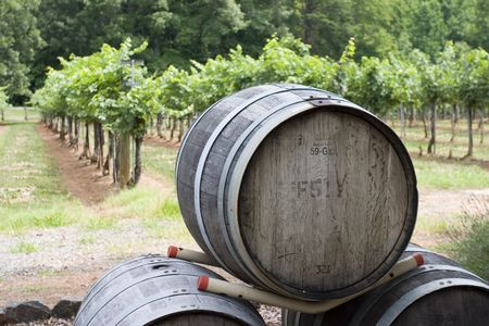 hudson: stacked wine barrels in front of vineyard in Hudson Valley, upstate New York.