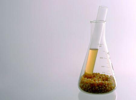 bio-fuel made from corn inside on test tube tha is inside of beaker full of corn kernels Imagens