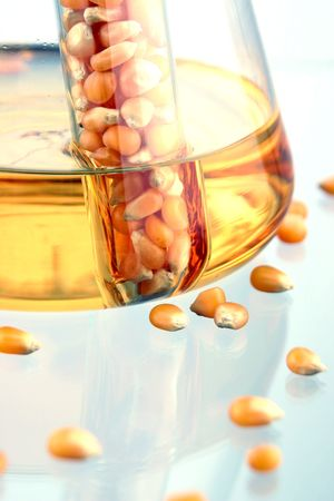 Closeup of BioFuel made from corn.