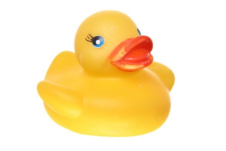 ducky: classic squeek toy rubber ducky isolated on white ground
