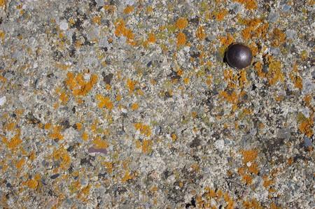 artifact: a rust metal artifact on old concrete