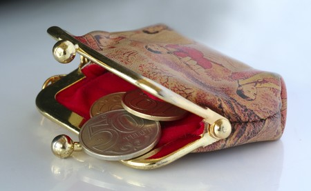 coinpurse with kazakh currency tenge