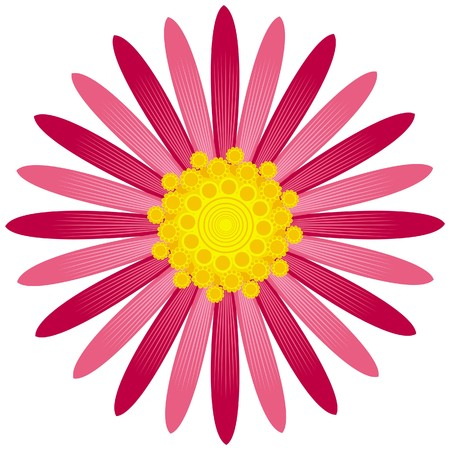 Asters flower from simple geometric figures