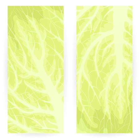 Set of vegetarian backgrounds with green cabbage leaf