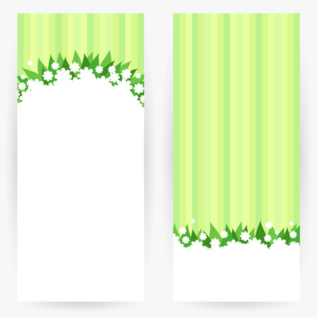 ox eye: Set of natural background in white-green colours with flowers, leaves and stripes