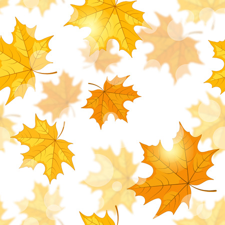 indian summer: Seamless pattern with yellow maple leaves, patches of sunlight on white background