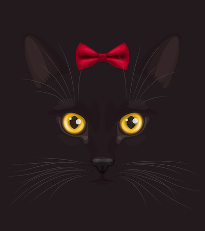 felidae: Muzzle of short-haired black cat with big yellow eyes, with stylish red bow on head top, at dark background Illustration