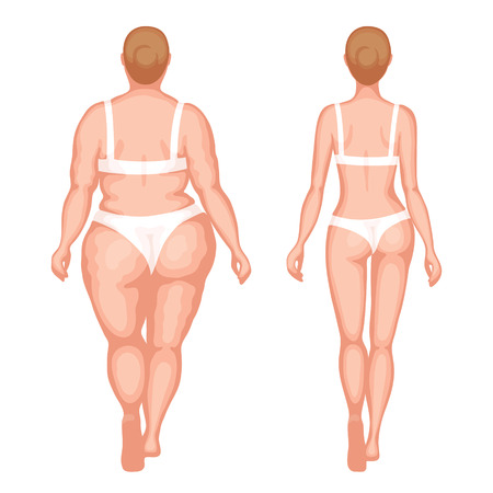 naked women: Obese woman and slender woman in white underwear. Back view. Healthy lifestyle and an unhealthy lifestyle concept Illustration