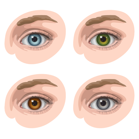 brown skin: Oval-shaped eyes with blue, green, brown and gray irides, on light skin