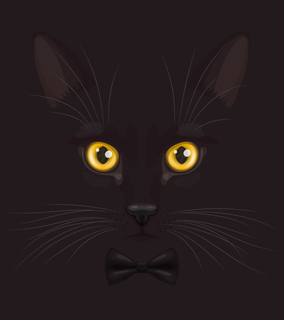 felidae: Muzzle of short-haired black cat with big yellow eyes, with stylish black bow-tie on neck, at dark background Illustration