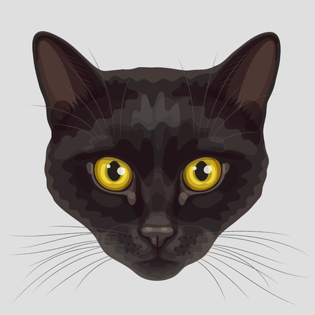 Drawn stylized muzzle of black short-haired cat with rounded yellow eyes