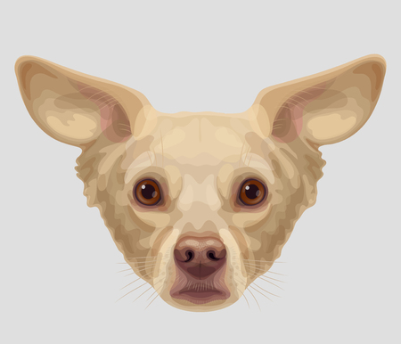 lop: Drawn funny lop-eared beige-colored dog muzzle with brown eyes and brown nose